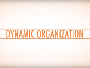 Support Leadership Teams In Building Dynamic Organizations