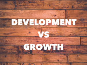 Great Leaders Focus on  Development before Growth